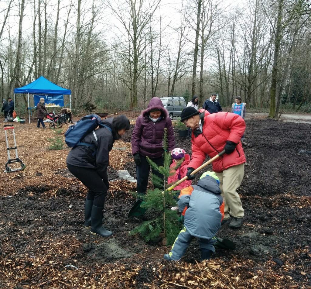 ec-new-year-planting